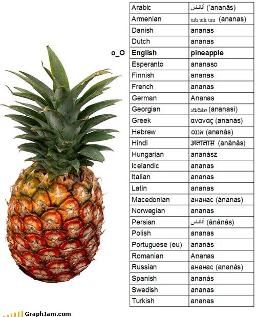 Ananas Englisch